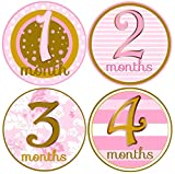Mumsy Goose Month Stickers Baby Girl Monthly Stickers 1-12 Months Blush Pink Gold Belly Stickers