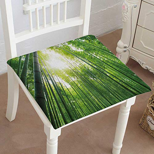 Mikihome Classic Decorative Chair pad Seat Bamboo Grove Bamboo Forest at arashiyama Kyoto Japan Cushion with Memory Filling 28