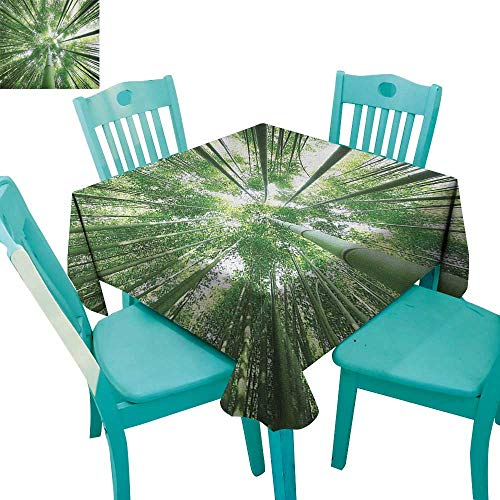 Tabletop Tree Bamboo Silk - MartinDecor Bamboo Dinning Tabletop DecorTropical Rain Forest Tall Bamboo Trees in Grove Exotic Asian Style Nature Zen Theme Image 36