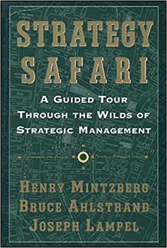 strategy safari summary