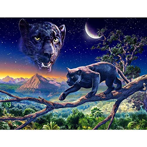 DIY Diamond Painting, Crystal Rhinestone Diamond Embroidery Pictures Arts Craft for Home Wall Decor Leopard Climbing Tree 15.7x11.8in 1 Pack by Aimerson