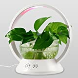 LED Indoor Garden Kit Plant Grow Light, Fish Tank Design with Sensitive Touch Control, Auto-Timer Function for Bedroom, Office, Kitchen