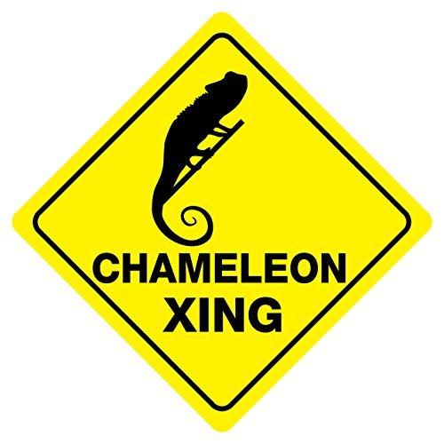 Chameleon Crossing Funny Aluminum Metal Sign 12x12 Inch