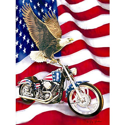 DIY Diamond Painting Kits For Adults Full Drill American Flag with Eagle Motorcycle Paint By Number Shiny Rhinestone Embroidery Cross Stitch Animal Picture