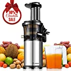 Aobosi Slow Masticating Juicer Extractor Compact Cold Press Juicer Machine with Portable Handle/Quiet