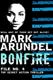 Bonfire (Meriwether Files Book 4)