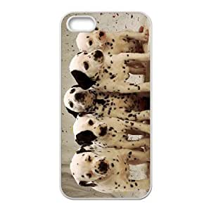 Cool Painting Dalmatian Classic Personalized Phone Case for Iphone 5,5S,custom cover case case-298630