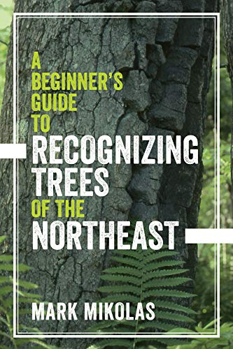 A Beginner's Guide to Recognizing Trees of the - Potato Tree