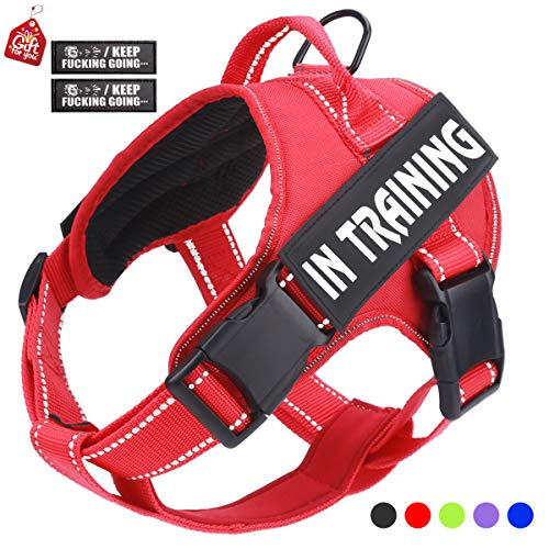 (No Pull Dog Harness with Reflective Straps Adjustable Service Dogs Vest with Nylon Handle Easy Walker in Training Pet Halters with Hook Oxford Fabric for Small Medium Large Dogs(Red))