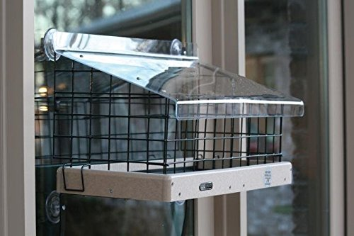 Birds Choice CAGE200 Mount Platform & Acrylic Topper Window (Platform Window Mount)