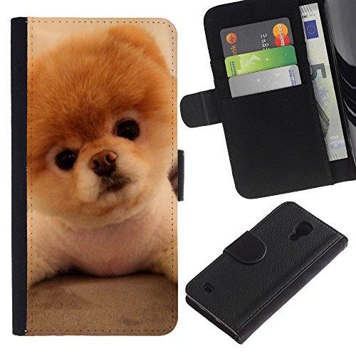 OMEGA Case / Samsung Galaxy S4 IV I9500 / Pomeranian puppy golden brown dog / Cuero PU Delgado caso Billetera cubierta Shell Armor Funda Case Cover Wallet Credit Card
