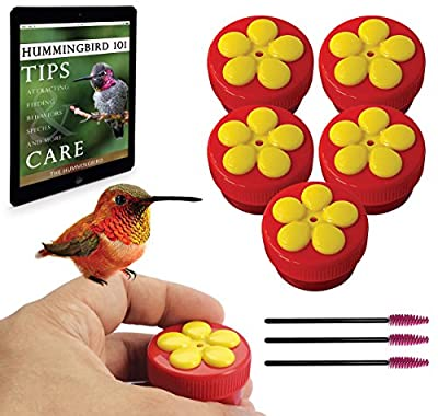Aroma Trees Handheld Hummingbird Feeders Kit (5 Items)