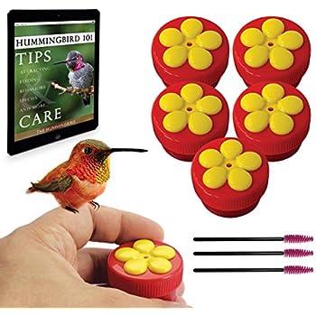 Aroma Trees Handheld Hummingbird Feeders Kit (5 Items)