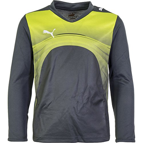 PUMA Mens PWR-C 3.10 GRAPHIC GOALKEEPER SHIRT For Soccer Grey Fluo (Graphic Goalkeeping Jersey)