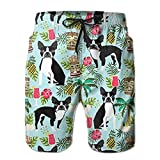 2018 pants New Boston Terrier, Palm Trees Summer Holiday Men's Beach Pants,Shorts Beach Shorts Swim Trunks