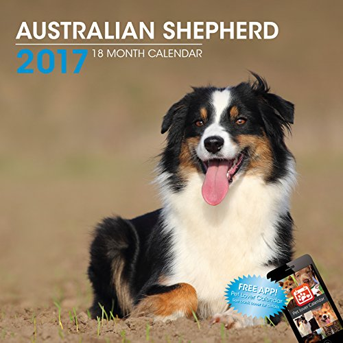 LittleGifts Australian Shepherd 2017 Calendar (3022) Photo #1