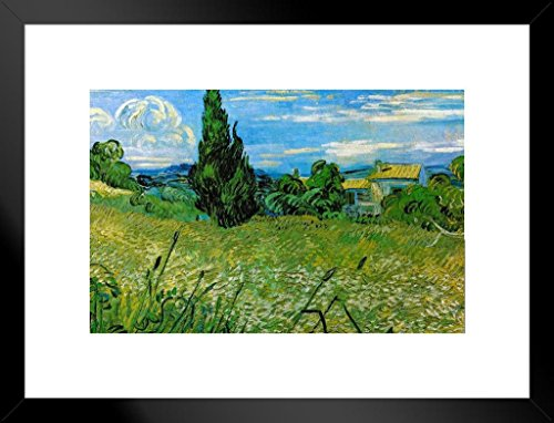 (Poster Foundry Vincent Van Gogh Green Wheat Field with Cypress Matted Framed Wall Art Print 26x20 inch)