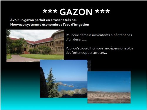 gazon-french-edition