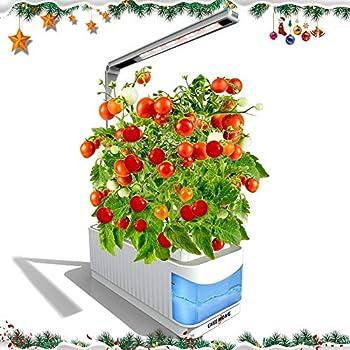 indoor hydroponic herb garden kit hydroponics growing system herb garden light for. Black Bedroom Furniture Sets. Home Design Ideas