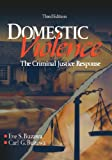 img - for Domestic Violence: The Criminal Justice Response book / textbook / text book
