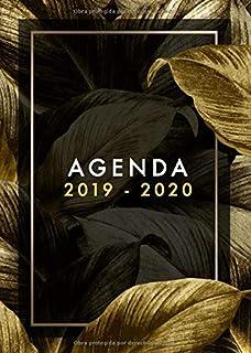 Amazon.com: 2019: ENE - DIC Agenda Semanal | 152 x 229 mm ...