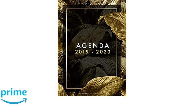 Agenda 2019-2020: Planificador Agenda Semanal Mensual Diario ...