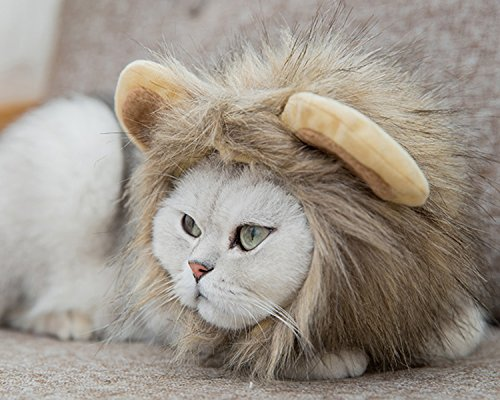 lcfun Lion Mane Costume for Cat Puppy - Pet Wig with Ears, Cat Clothes for Halloween (Pet Cat Lion Costume)