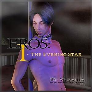 The Evening Star Audiobook