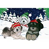 Havanese Christmas Cards : 10 Holiday Cards with Red Envelopes - ADORABLE!