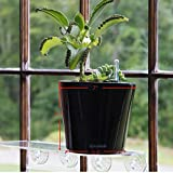 "Aquaphoric Self Watering Planter (7"") + Fiber Soil = Foolproof Indoor Home Garden. Modern Decorative Planter Pot for All House Plants, Flowers, Herbs, African Violets, Succulents. Easy / Looks Great."