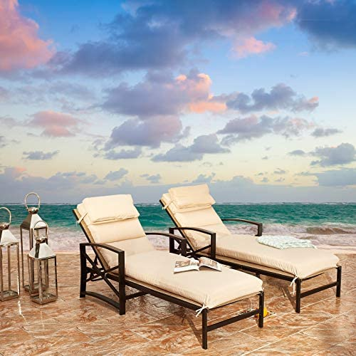 Festival Depot 2 Pieces Patio Outdoor Chaise Lounge Recliner Chair