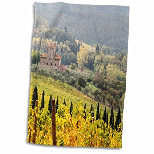 3D Rose Italy Vineyard in Autumn in The Chianti Region of Tuscany. TWL_207836_1 Towel, 15