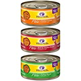 Wellness Complete Health Natural Canned Grain Free Wet Pate Cat Food, Best Sellers Variety Pack, 5.5-Ounce Can (Pack of 30)