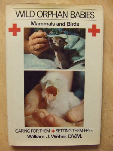 Wild orphan babies: Mammals and birds : caring for them & setting them free
