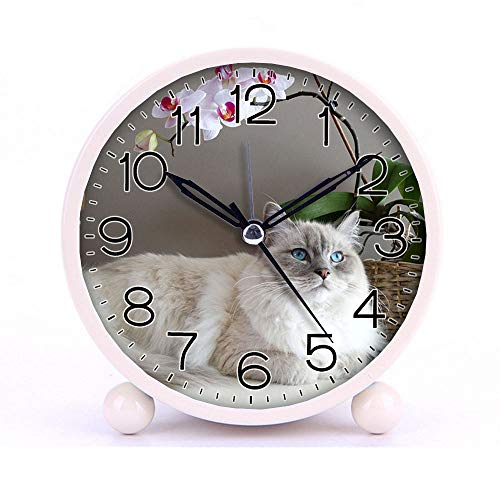 Cat Brown Maine Coon - Cute Color Alarm Clock, Round Metal Desk Clock Portable Clocks with Night Light House Decorations -133.Gray and White Maine Coon Cat Beside Brown Wicker Basket (Blue)