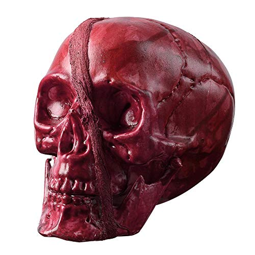 - AW Halloween Skeleton Head Human Skull Plastic Prop Haunted House Party Ornament Horror Decoration 7