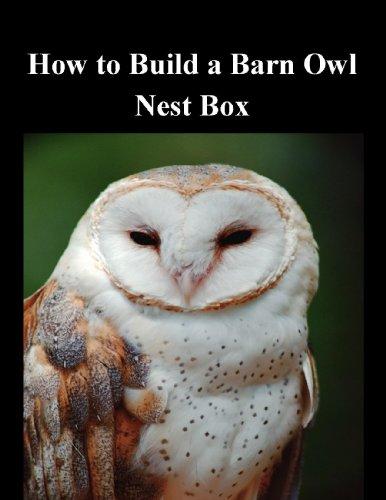 How to Build a Barn Owl Nest Box Barn Owl Nest Box