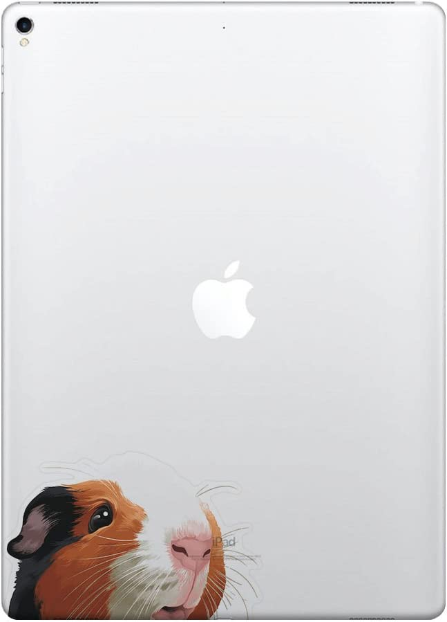 FINCIBO 5 x 5 inch Black White Brown Guinea Pig Removable Vinyl Decal Stickers for iPad MacBook Laptop (Or Any Flat Surface)
