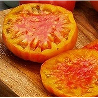 Virginia Sweets Tomato Seeds (20 Seed Pack) : Garden & Outdoor