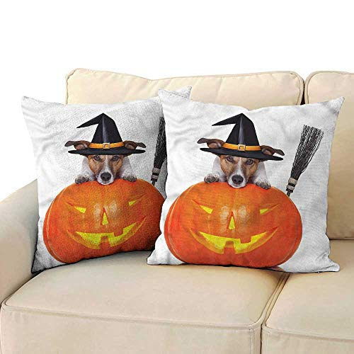 Godves Velvet Pillowcase Halloween Witch Dog with Broomstick Velvet Soft Soild Decorative 18