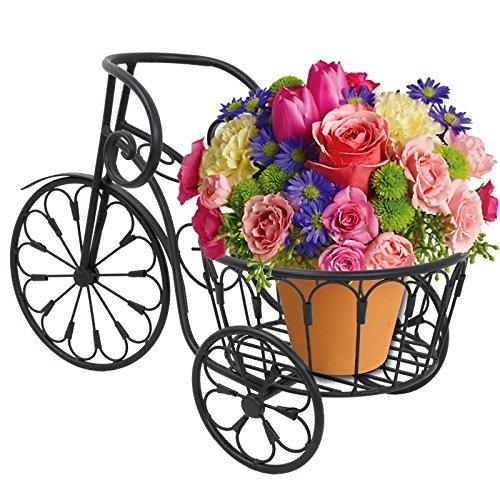 LEMY Mini Bicycle Planter Flower Pot Cart Holder Metal Plant Stand Garden Home Decor