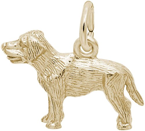 Gold Charm Retriever Plated Dog (Rembrandt Small Labrador Retriever Dog Charm - Metal - Gold Plated Sterling Silver)