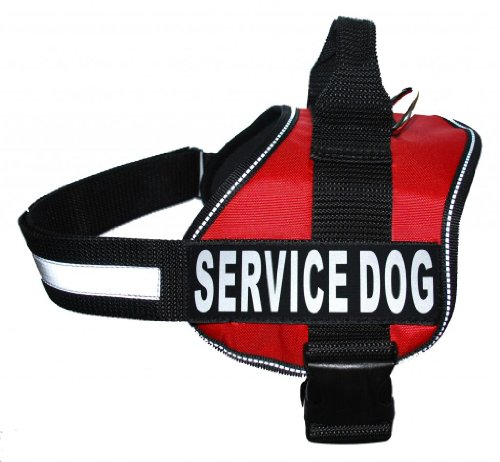 Service Dog Harness Vest Cool Comfort Nylon for dogs Small Medium Large 14 -39″ Girth Purchase comes with 2 SERVICE DOG pathces, My Pet Supplies