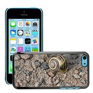 GoGoMobile Etui Housse Coque de Protection Cover Rigide pour // M00124018 Snail Shell Naturaleza Animales // Apple iPhone 5C