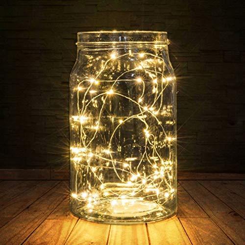 BXROIU Guirlande lumineuse fil d'argent de 5m,Batterie Opération et 2 Programme (Blanc chaud)