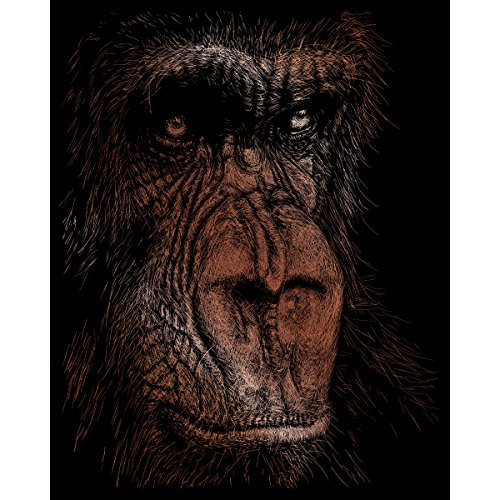 Copper Foil Kit (Royal Brush Copper Foil Engraving Art Kit, 8-Inch by 10-Inch, The Wise Simian)
