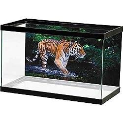 Rock Background Aquarium Safari,Tiger in Water Stream Hunting Danger Trees Tropical Pond Hiding Captive, Green Orange Brown Double Sides Wallpaper