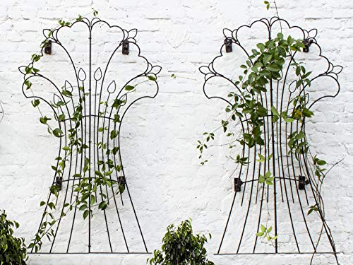 H Potter Garden Harvest Wrought Iron Trellis Weather Resistant Large Set of Two Includes Wall Mounting Brackets (Brackets Trellis)