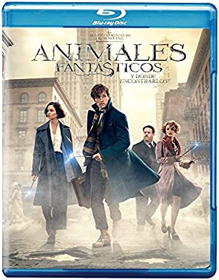 Animales Fantasticos Y Donde Encontrarlos Torrent