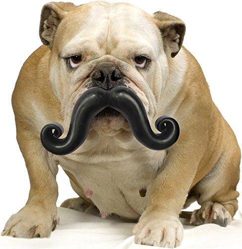 Love Mops - Moody Pet Humunga Stache - Large